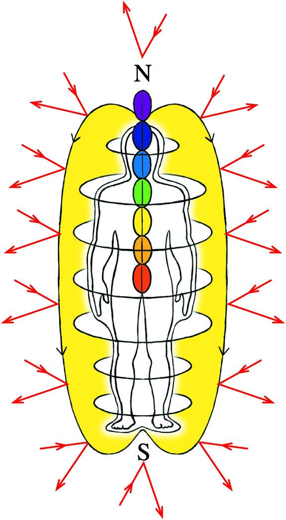 Energiefeld des Menschen mit Nord- und Südpol sowie den Chakren.