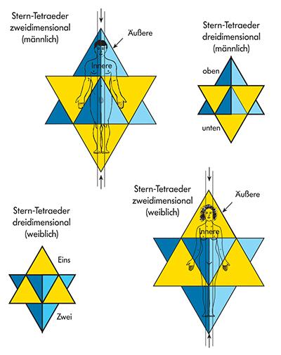 Der Stern-Tetraeder mit Richtungsangabe für Mann und Frau
