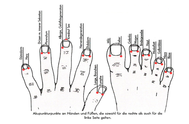 The terminal acupuncture points on the human hands and feet