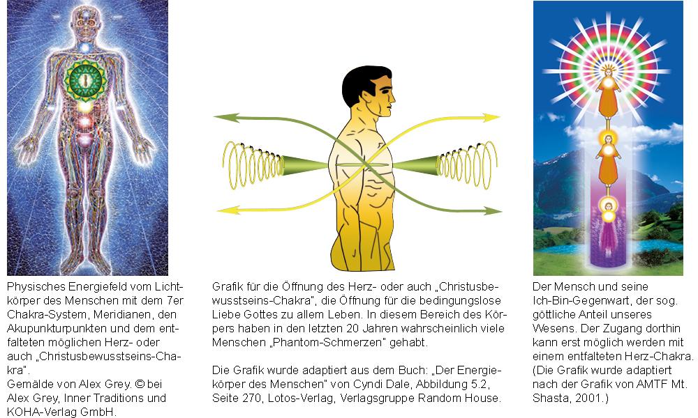 Der Lichtkörper des Menschen mit 7er Chakren-System