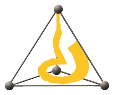 The torus within a three-dimensional tetrahedron