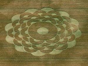 Herz-Chakra mit 12 Blütenblättern