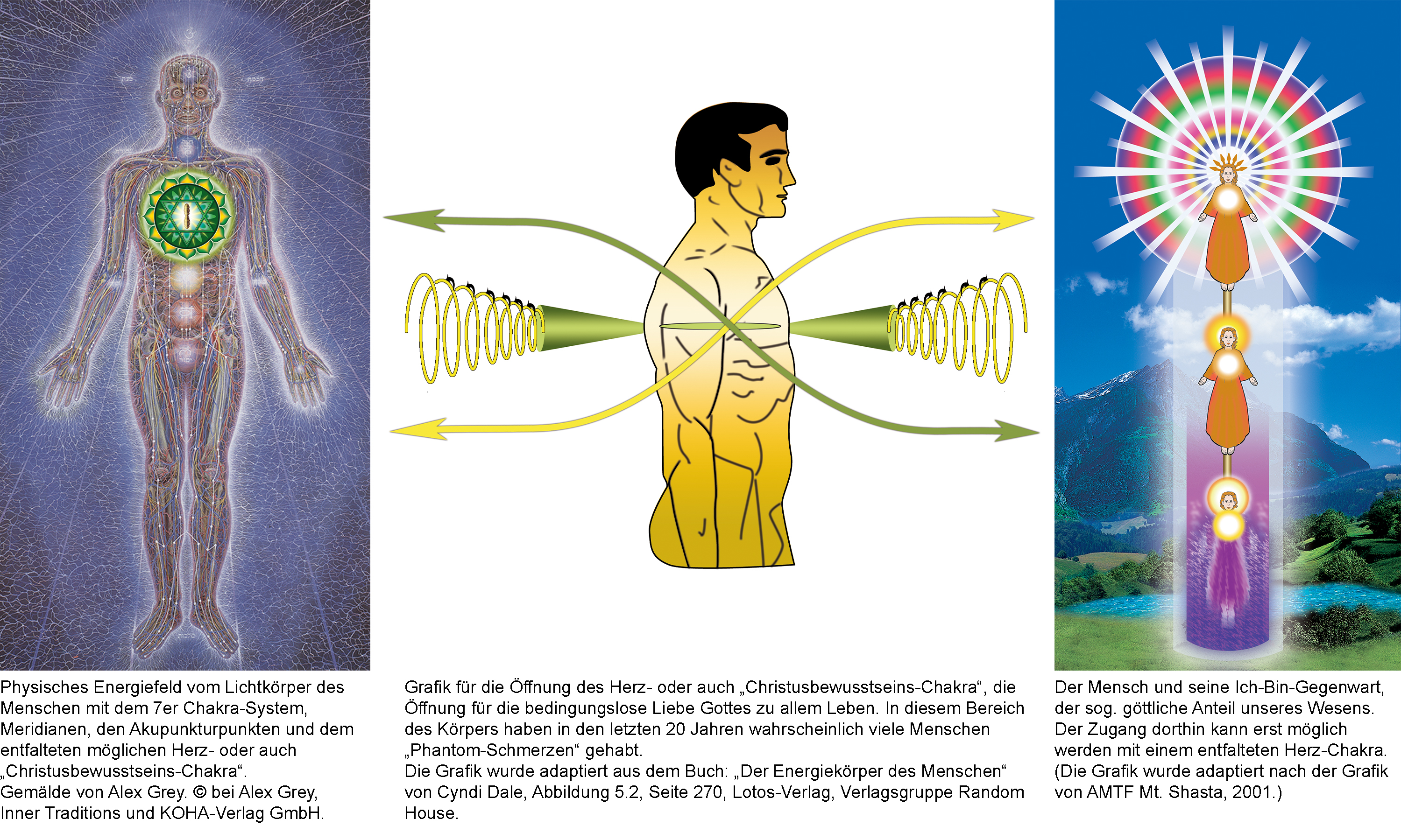 The light body of the human being with 7 chakra system