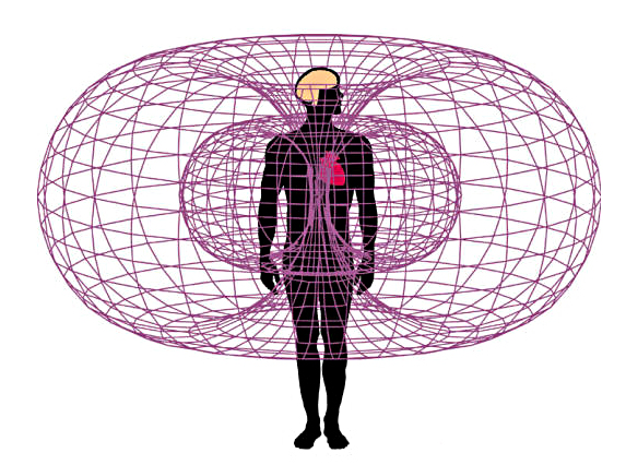 Electromagnetic field of the heart