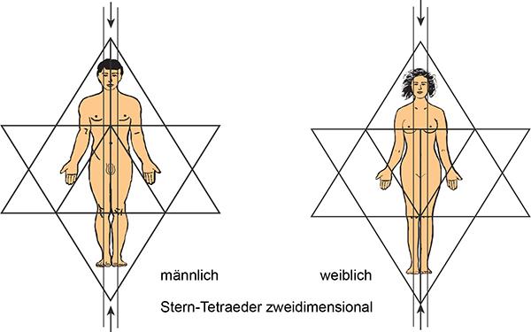 männlich, weiblich, Stern-Tetraeder zweidimensional